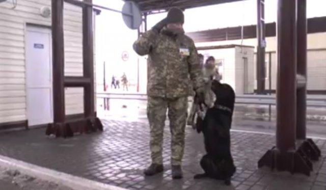 На Украине пограничники научили собаку откликаться на фразу