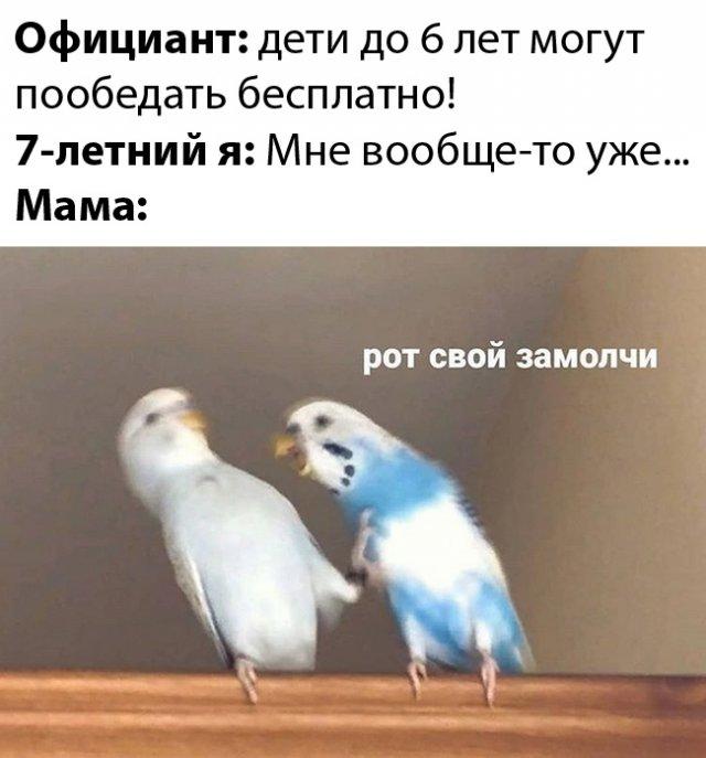 189108_25_trinixy_ru.jpg