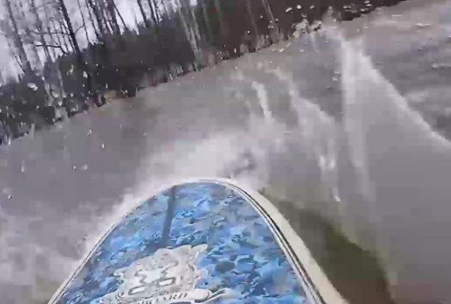 Серфинг в затопленном лесу