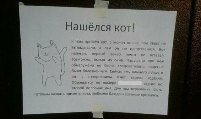 Смешные объявления о пропавших животных