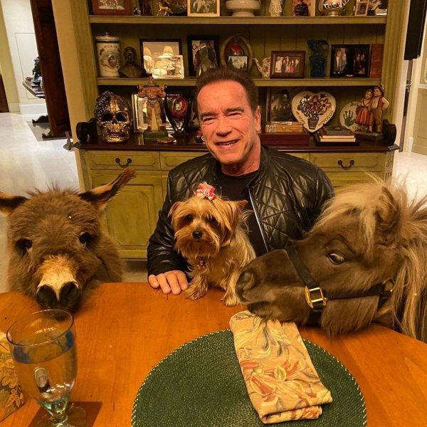 Арнольд Шварценнегер с животными
