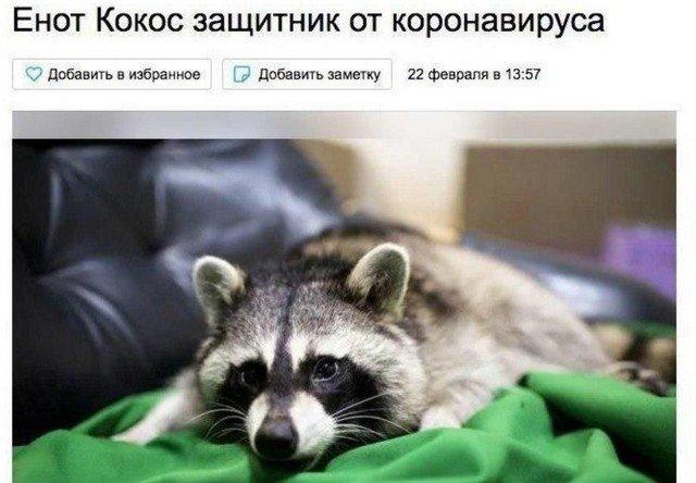 Россияне зарабатывают на коронавирусе