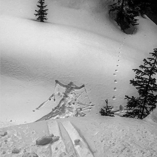 Лыжи - это весело, говорили они...