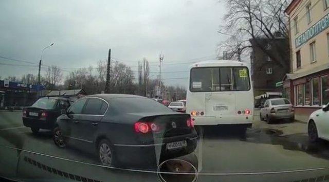 Встретились два индивидуума на дороге