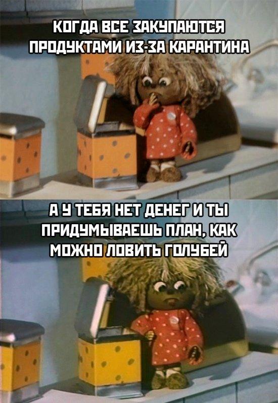 мемы про самоизоляцию, карантин и пустые полки