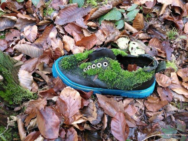 Брошенный в лесу ботинок