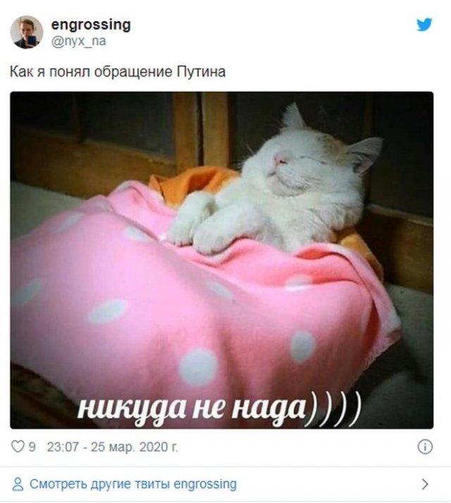 Реакция соцсетей на речь Владимира Путина