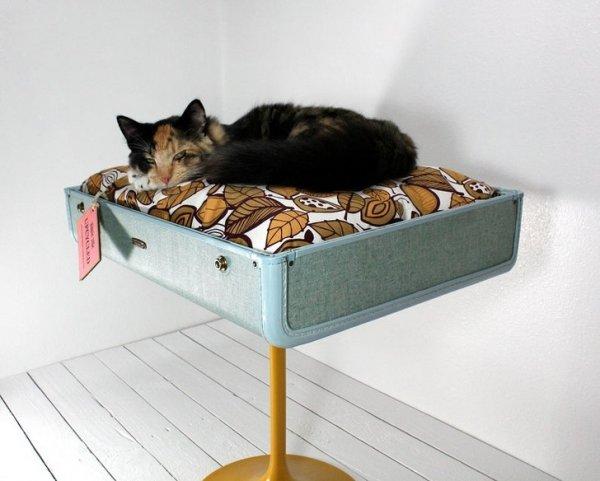 Лежанка для котика, сделанная из чемодана