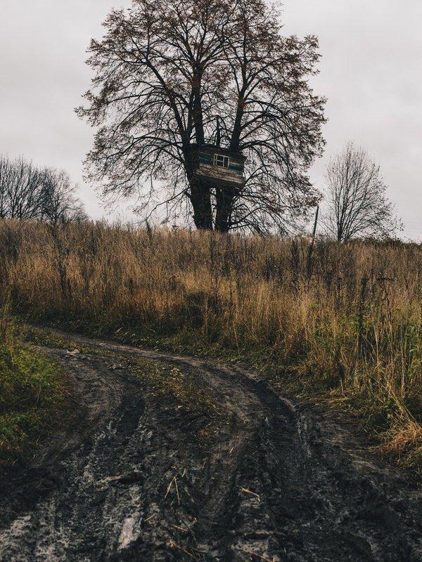 место для самоизоляции от Александра Сухарева