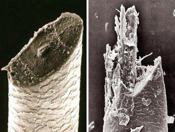 Как бреет опасная бритва и триммер