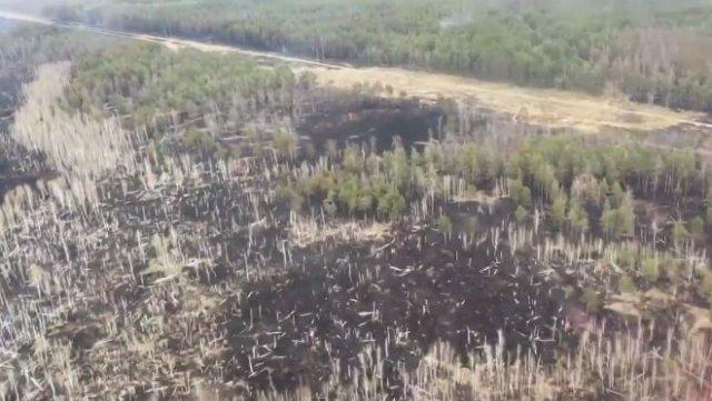 Пожар в Чернобыле потушили - последствия возгорания