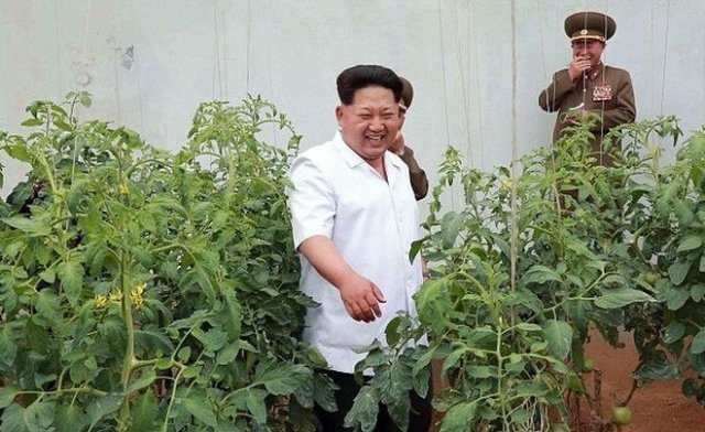 Советник президента Южной Кореи рассказал, что с Ким Чен Ыном