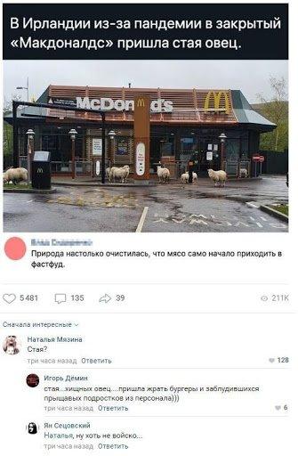 Смешные комментарии и скриншоты из социальных сетей