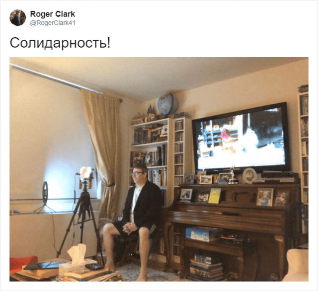 Репортер вышел в прямой эфир из дома без штанов и стал звездой Сети