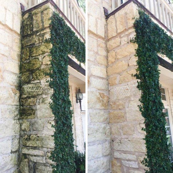 Стенам тоже нужен уход