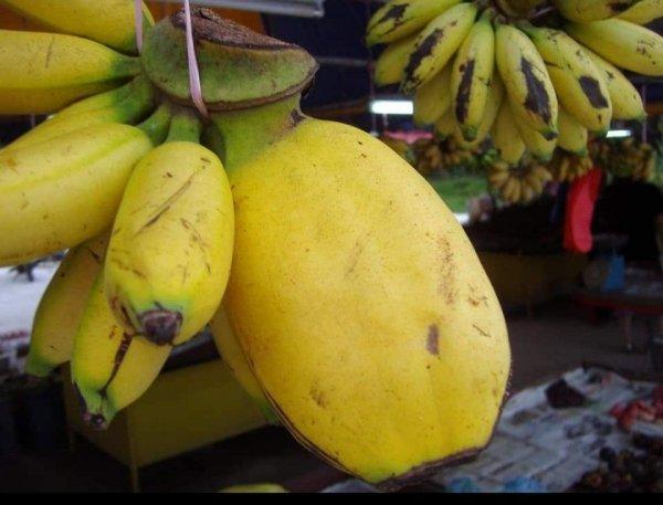 Этот мини-банан немного толстоват