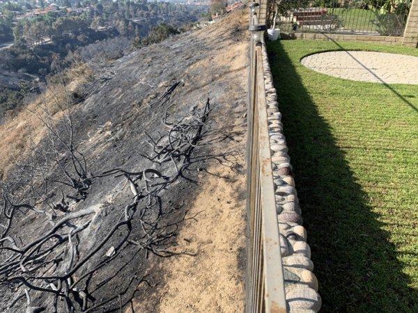 Лесной пожар решил остановиться в сантиметрах от моего дома