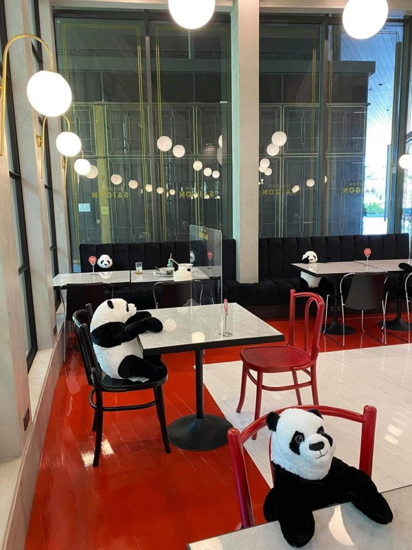 Игрушечные панды