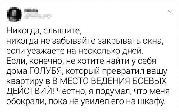 """Подборка из серии """"бывают в жизни огорчения"""""""
