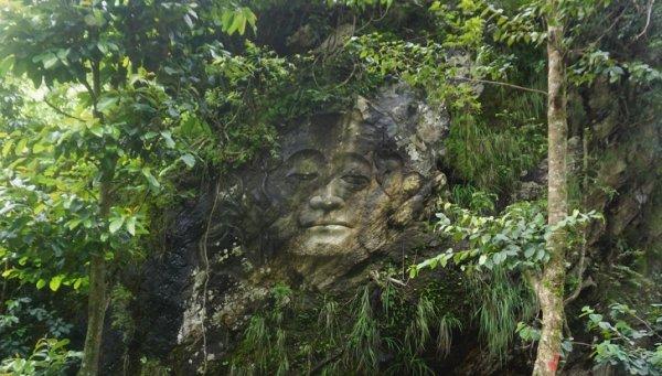 Лицо на скале