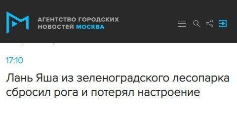 Эпичные заголовки в российских СМИ