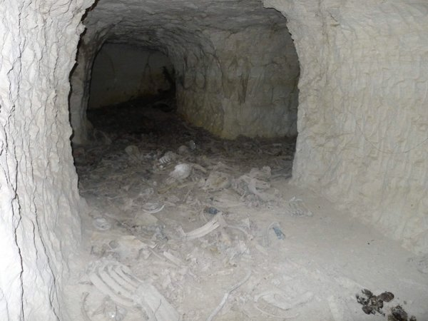 Львы использовали этот меловой рудник как столовую