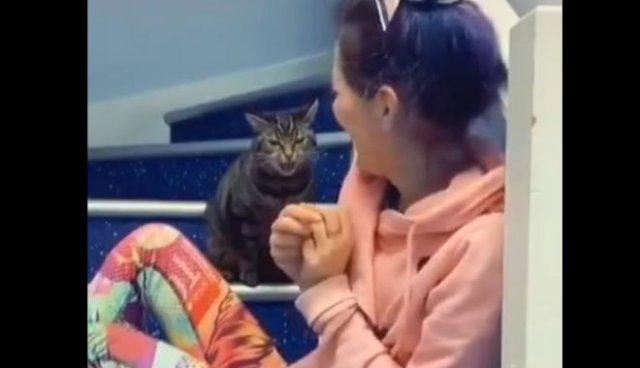 Кошка учит девушку нормально петь