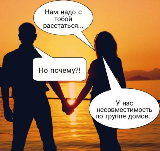 Москвичи шутят про прогулки по графику