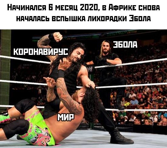 какие мемы популярны в Сети