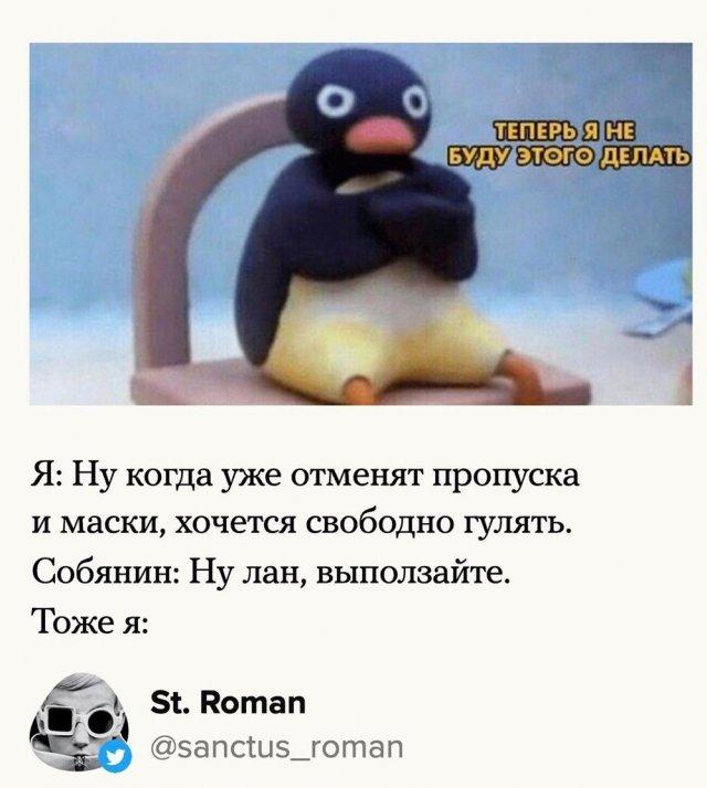 лучшие мемы