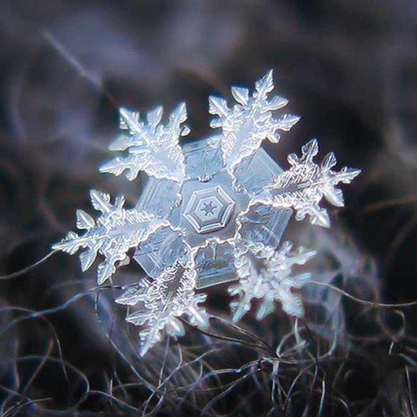 Неописуемая красота снежинки