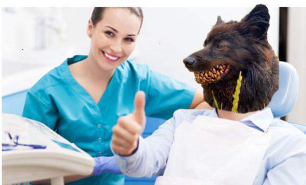 Приходите к нашим профессиональным собачьим стоматологам