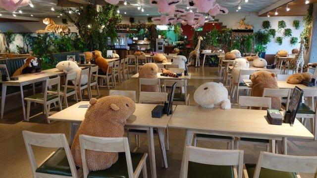 Кафе Gibbontei