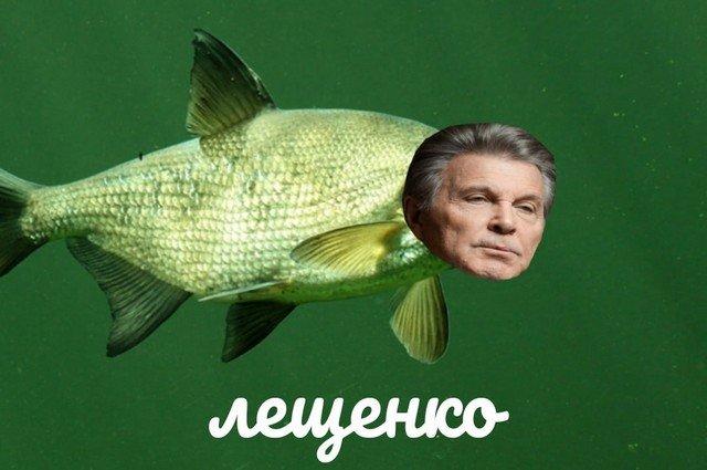 В твиттере новый тред: российских звезд превращают в еду