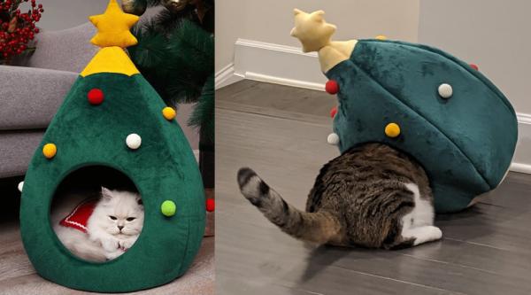 Домик для кота оказался не по размеру