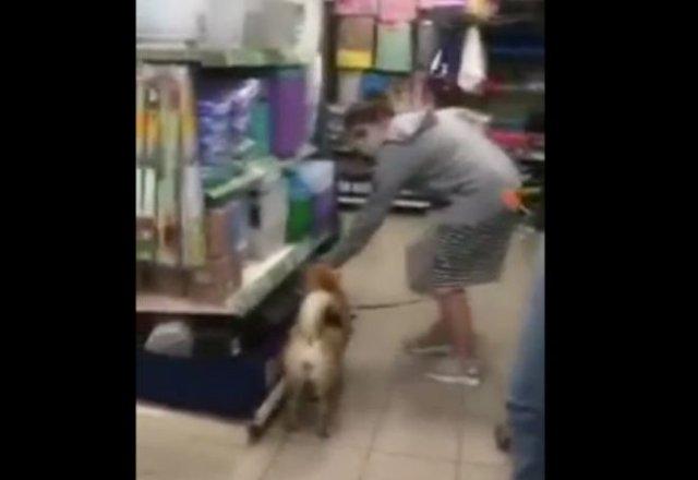 Драка в супермаркете из-за собаки. Кто прав?