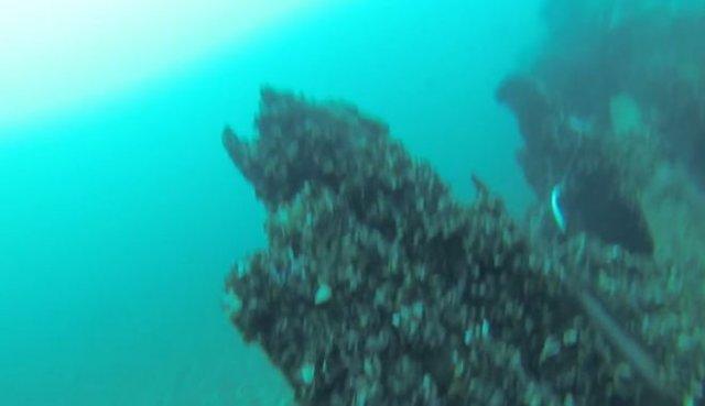 Аквалангист проплыл под огромным судном