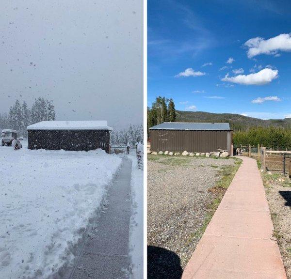 Разница между фото - 1 день