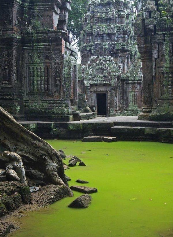 Старый храм в джунглях