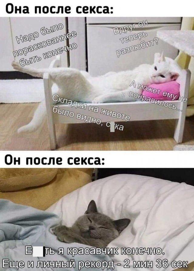"""Приколы и мемы про """"это"""""""