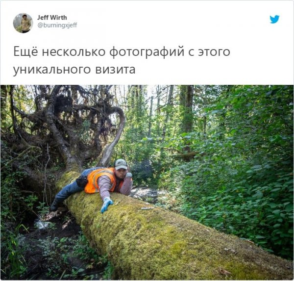 Пост Джеффа Вирта