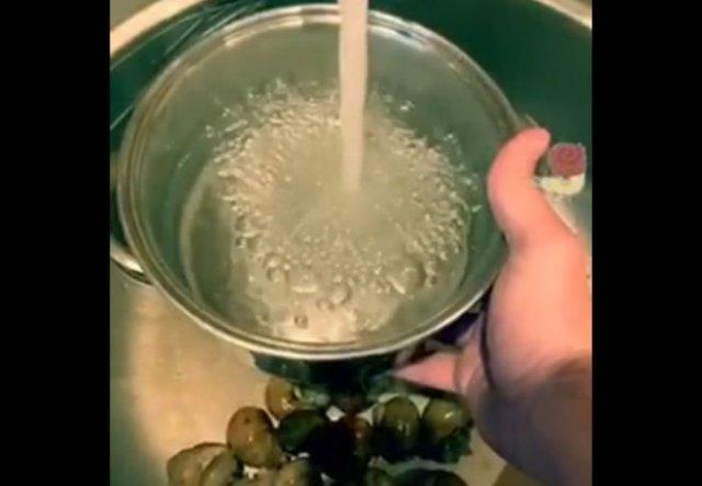 """""""Правильное"""" приготовление улиток"""