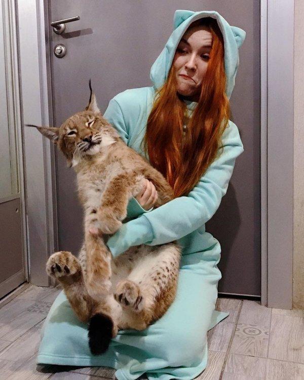Девушка из Санкт-Петербурга спасла двух рысей и приютила их у себя