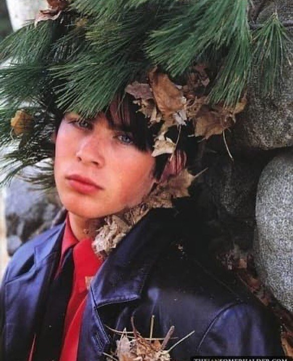 Когда деревья были большими, а знаменитости - молодыми