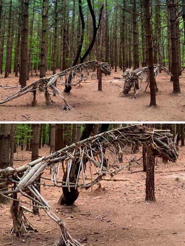 Наткнулись на деревянных динозавров