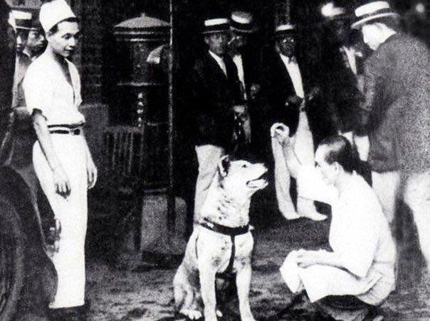 Хатико с хозяином профессором Уэно, 1924 год.