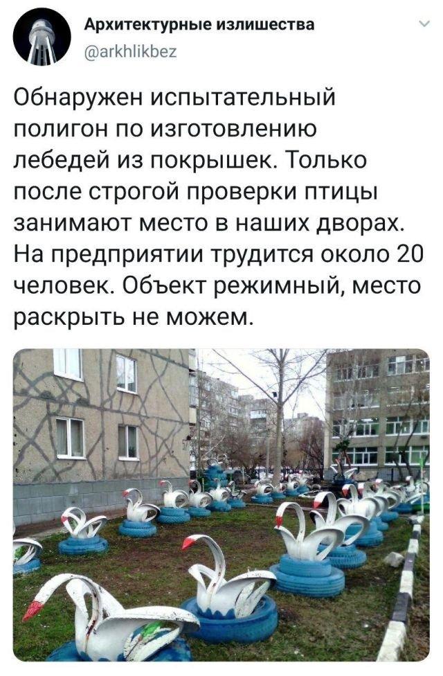 Твит про про лебедей в покрышках