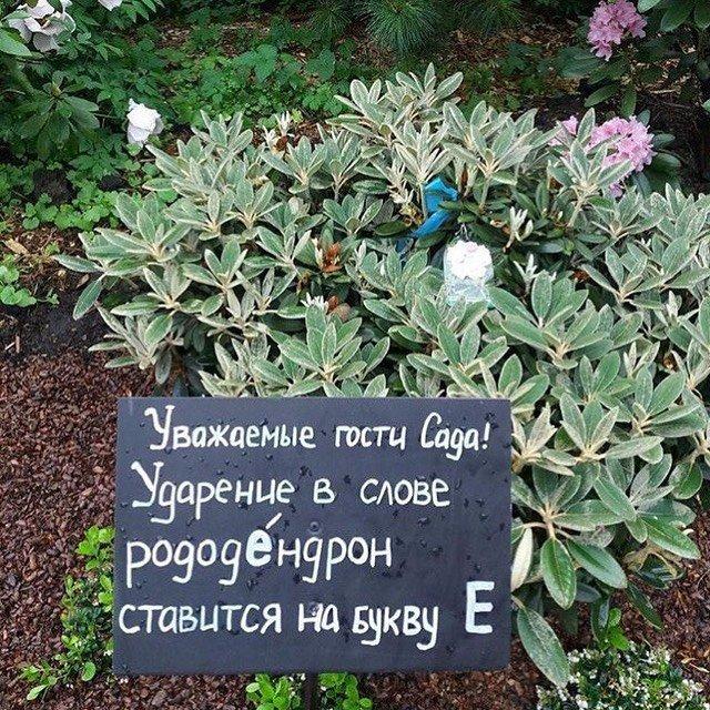 Юмор от садовников