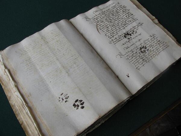 Средневековые отпечатки кошачьей лапы на рукописи