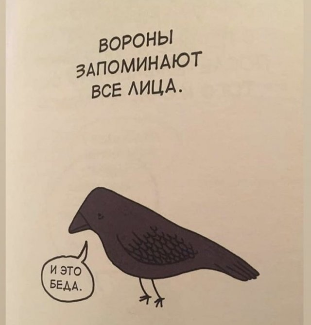 Грустные факты о животных Брука Баркера ворона